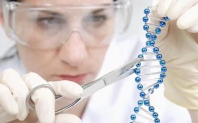美国试管婴儿囊胚移植失败的原因是什么?